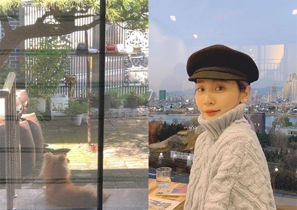 赤頬思春期アン・ジヨン、亡くなった愛犬に別れを告げる「チュミに会いたい」